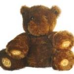 Nabar, el oso cuentacuentos