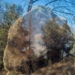 El somni de la roca