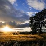 Viaje Escocia (Resumen)