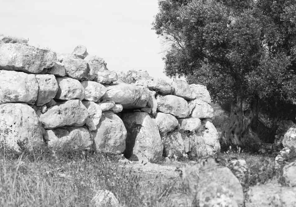 Navetes funeràries Rafal Rubí , Menorca Tailaiòtica